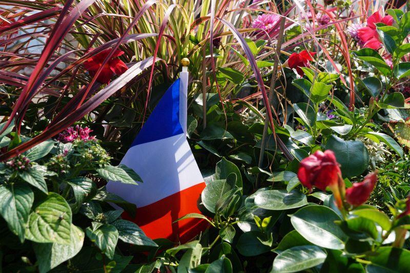 Französische Markt Neuwied