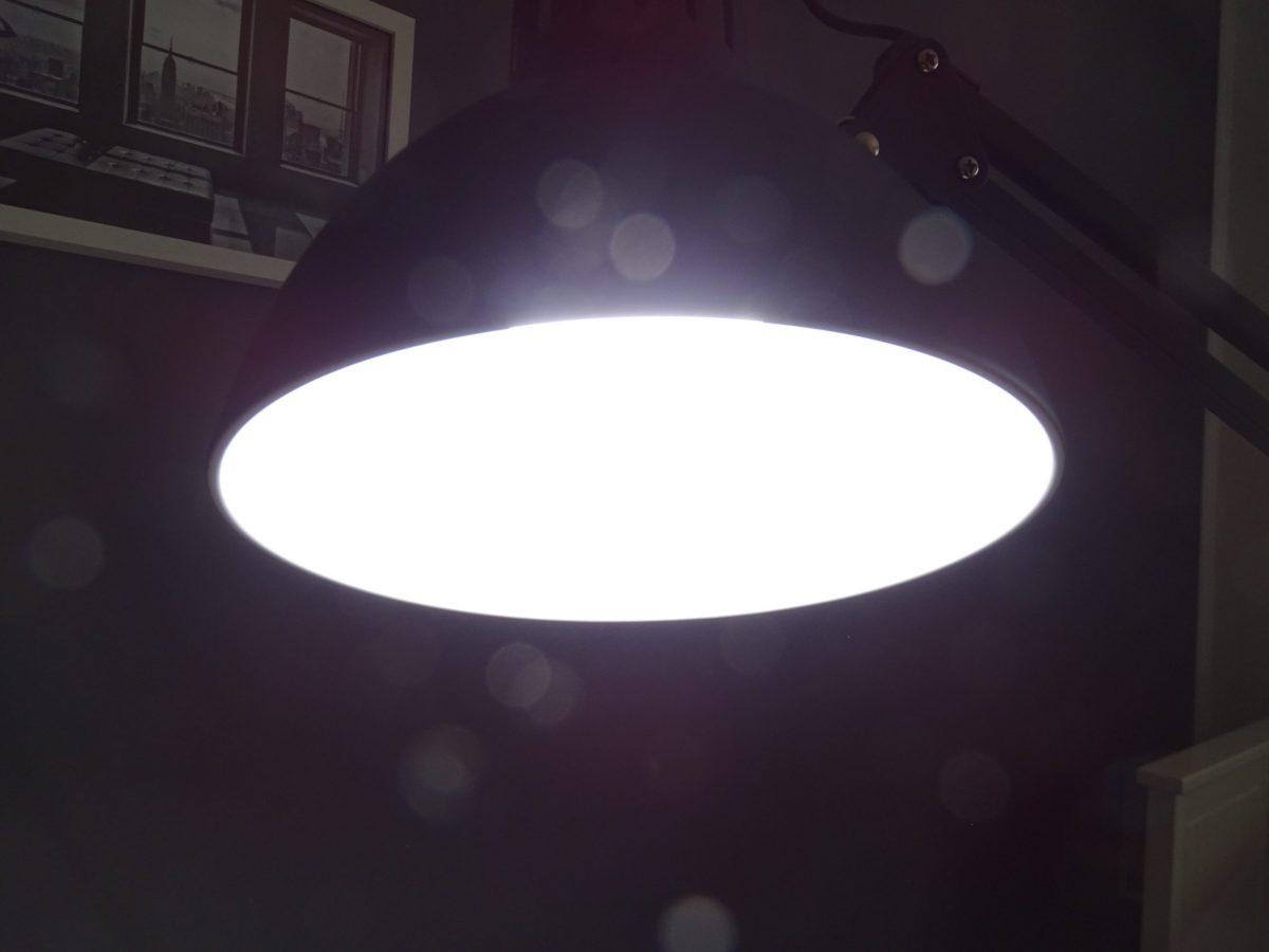 Lichtmangel natur nah