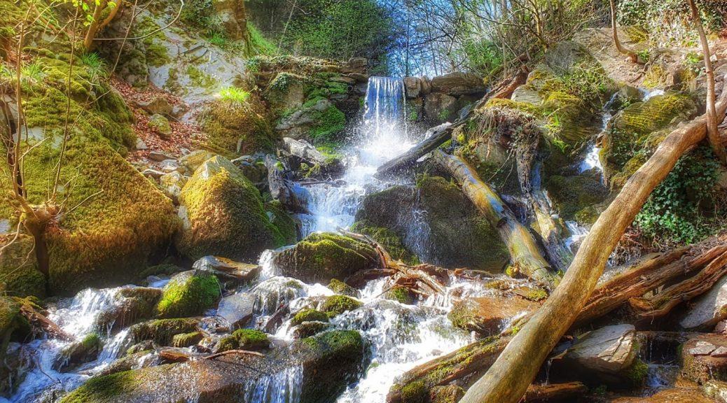 Laubacher Wasserfall Neuwied